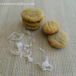 Mini Coconut Almond Cookies