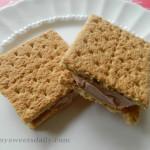 Nutella Frozen Sandwich Treats
