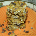 Healthy Vegan Pumpkin Granola Bars