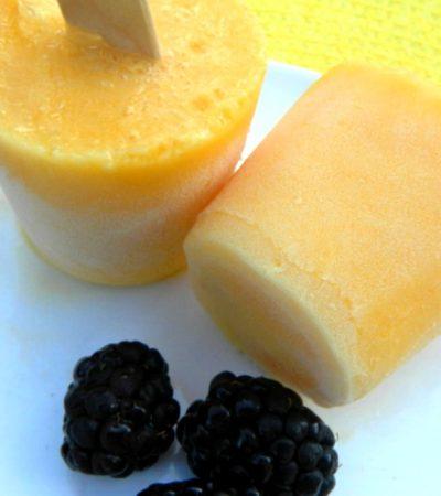 No Fat Orange Creamsicle Pops