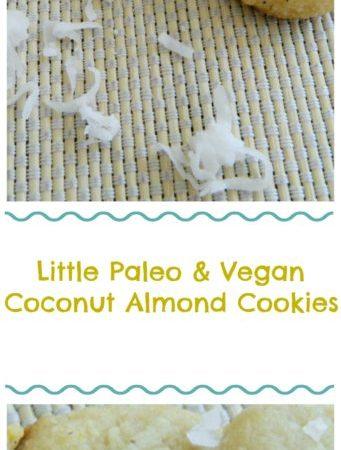 Little Paleo & Vegan Mini Coconut Almond Cookies