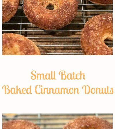 Small Batch Baked Cinnamon Sugar Donuts