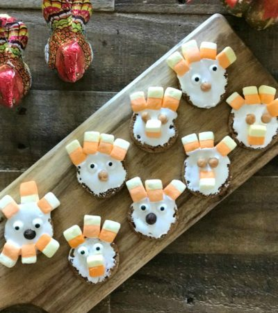 No Bake Thanksgiving Cookie Project